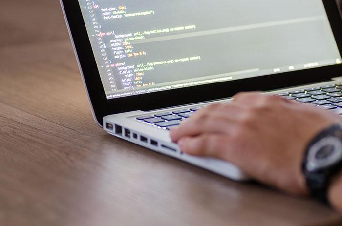 Web designer ou desenvolvedor web?